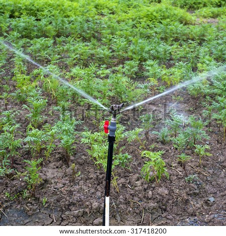 Agriculture automatic watering - stock photo