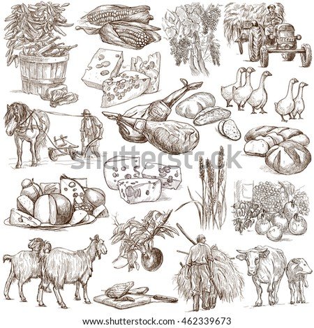 AGRICULTURE. Farming - Life of a farmer. Collection of hand drawing illustrations. Line art technique. Drawing on white.