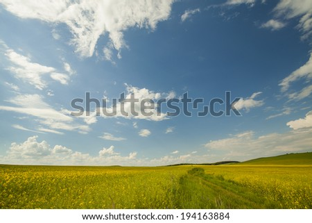 Agriculture field and blue sky - stock photo