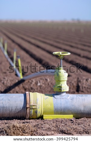 Agriculture field being irrigated with pipes and sprinklers. - stock photo