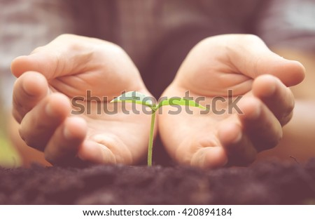 Agriculture. Hands growing and nurturing tree growing on fertile soil with green and yellow bokeh background / nurturing baby plant / protect nature - stock photo
