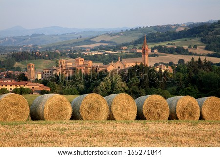 agriculture harvesting hay for livestock castelvetro - stock photo