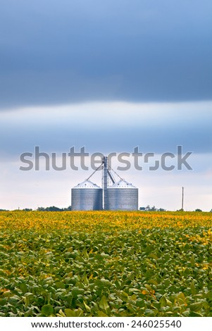 Agriculture industry with soybean fields and silo storage on cloudy day in Midwest USA - stock photo