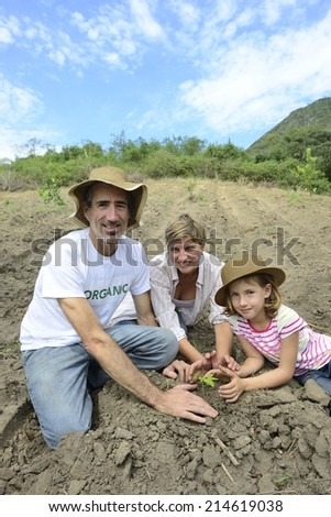 Agriculture or growth: Family of organic farmers planting seedling - stock photo