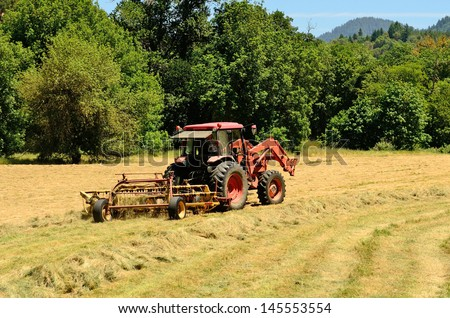 Agriculture tractor pulling a rotary bar tine rake through a field of cut grass hay to windrow for the baler for winter livestock feed - stock photo