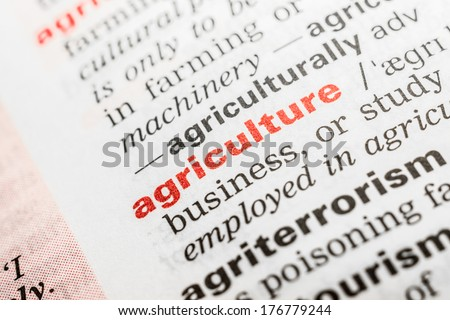 Agriculture Word Definition In Dictionary - stock photo