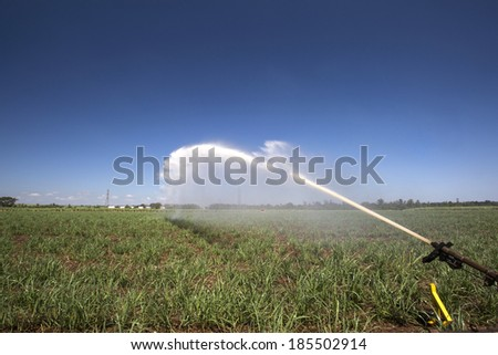Agrigulture, irrigation, sugarcane