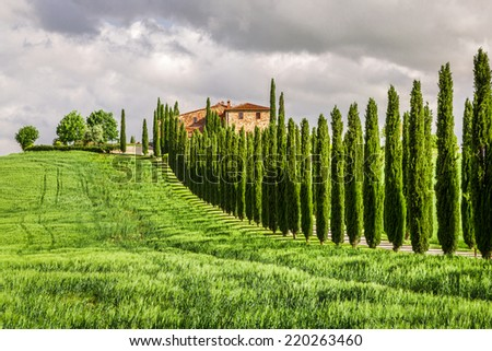 Agritourism in Tuscany with cypresses - stock photo