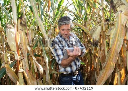 Agronomist in corn field with electronic tablet - stock photo