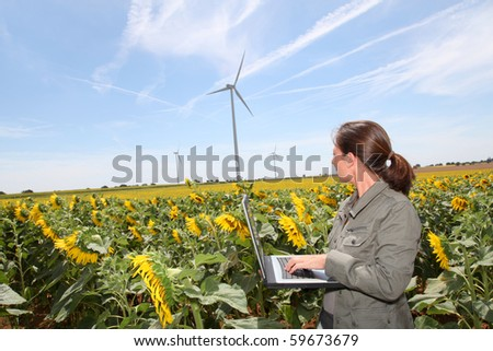 Agronomist in sunflowers field - stock photo
