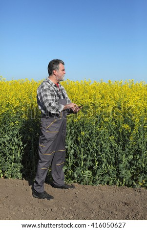 Agronomist or farmer examine blooming canola field, rapeseed plant, using tablet