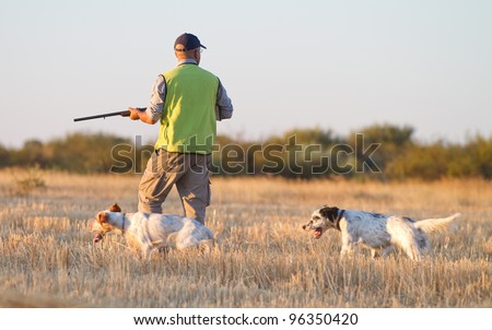 Agustin Romain (pointer and english setter trainer) trains a pointer with quails and shotgun for hunting - stock photo