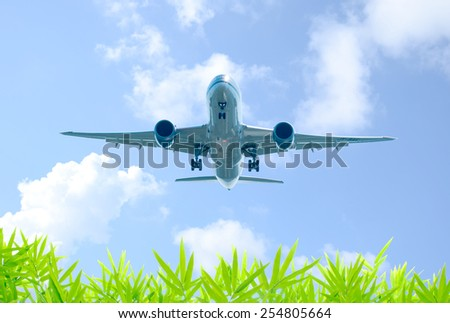 Aircraft takes off over the bamboo leaf - stock photo
