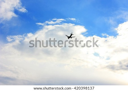 Airplane flies in the sky