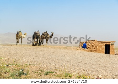 AIT BENHADDOU, MOROCCO, APRIL 10, 2015: Local boy waits for tourists with his camels - stock photo