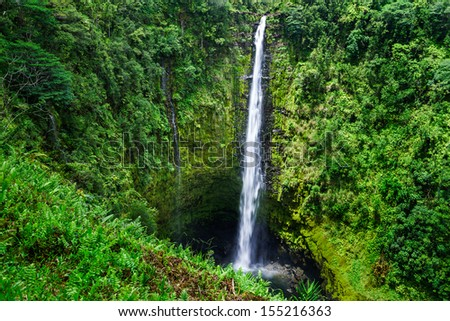 Akaka falls close to Hilo, Big Island, Hawaii