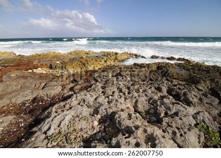 akumal riviera maya beach famous for turtles - stock photo