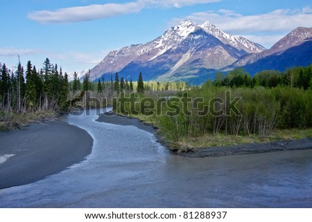 Alaskan Wilderness - stock photo