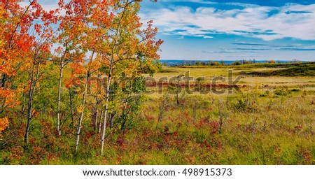 Alberta Prairie Lands in Autumn with Fall colors and blue sky.  Alberta, Canada