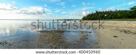 Albion coast panorama - stock photo