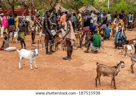 ALDUBA, ETHIOPIA - MARCH 18,2014 - The Banna are Muslim shepherds living in the highlands of southwest Ethiopia. They are primarily located in the Gemu Gofa province, which is east of the Omo River.