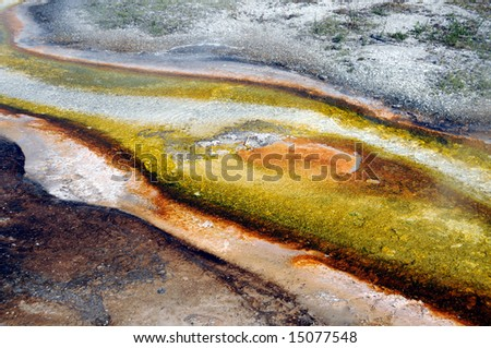Algae and bacteria formations in flowing stream - stock photo