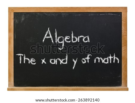 Algebra the x and y of math written in white chalk on a black chalkboard isolated on white - stock photo