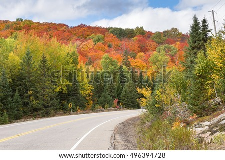 Algonquin Park in the fall season