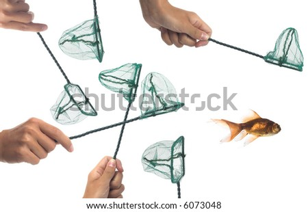 all trying to catch the only fish in the water - stock photo