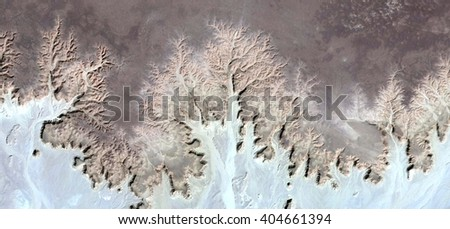 Allegory of petrified and frozen enchanted forest,Photographs magic, just to crazy, artistic, abstract, from the deserts of Africa from the air, landscapes of your mind, optical illusions