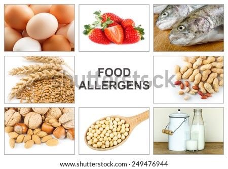 """Allergy food concept. Food allergens as eggs, milk, fruit, tree nuts, peanut, soy, wheat and fish. Text """"food allergens"""" easy to remove  - stock photo"""