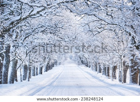 Alley in snowy morning - stock photo