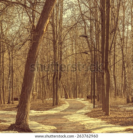 Alley in the old city park on spring at evening time. - stock photo