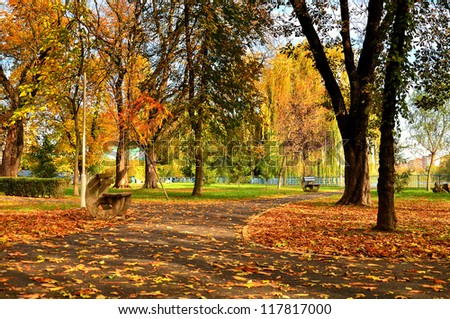 Alley in the park (autumn landscape)