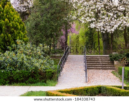 Alleys in the park with stairs, vegetation and blooming trees