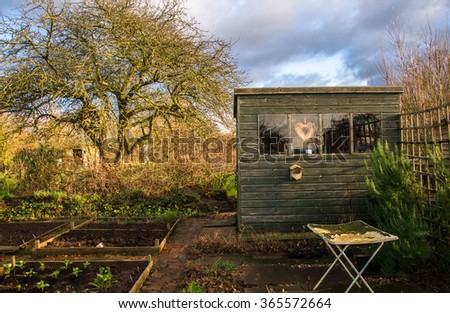 Allotment loving vegetable garden - Allotment plot with organized areas for growing vegetables and a shed. It seems someone has put so much love in this vegetable garden. - stock photo