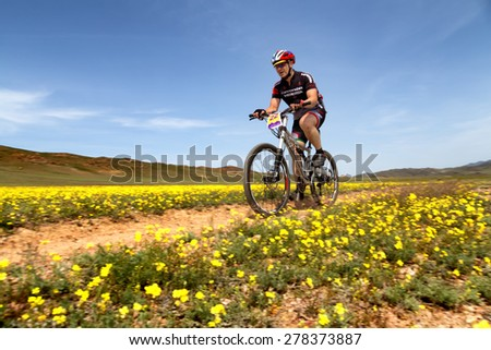 "ALMATY, KAZAKHSTAN - MAY 1, 2015: I.Baranov (N22) in action at Adventure mountain bike marathon ""Jeyran Trophy 2015"""