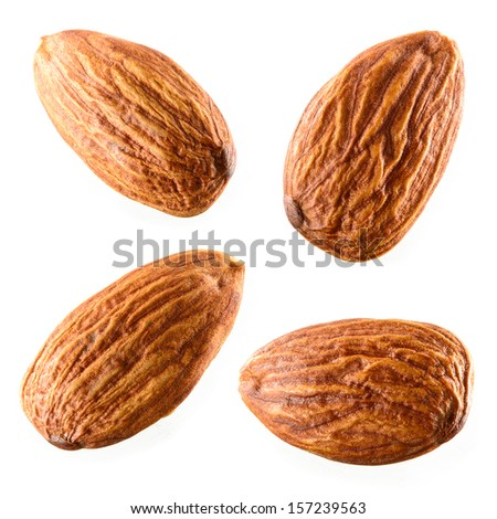Almond. Collection isolated on white background