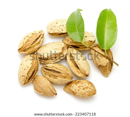 almond fruits on a white background