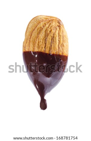 Almond nut dipped in liquid chocolate isolated on white background.