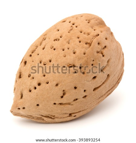 Almond nut in shell isolated on white background close up - stock photo