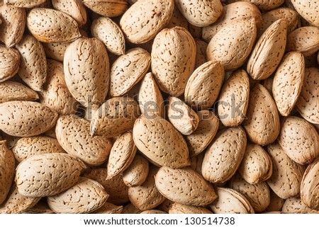 almonds in shell - stock photo