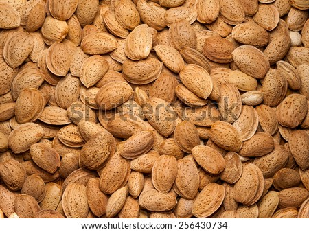 Almonds in shell close up - stock photo