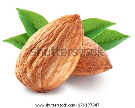 Almonds with leaves isolated on white background. Image with maximum sharpness. Clipping path.