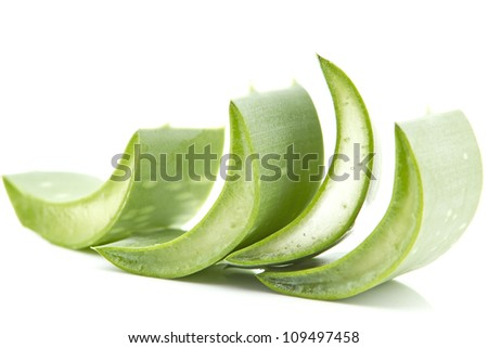 Aloe is widely proved to be very effective in the treatment of various skin disorders, and beauty. It heals wounds and prevents infection as well as strengthens collagen to re-build damaged tissues. - stock photo