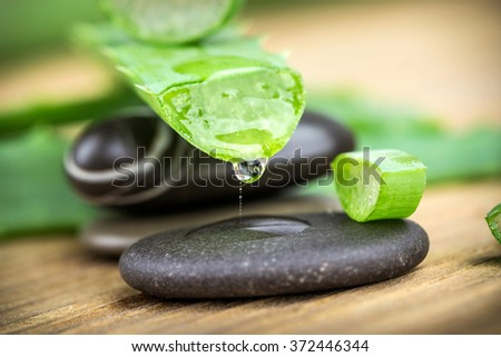 Aloe on a wooden background with stones - stock photo