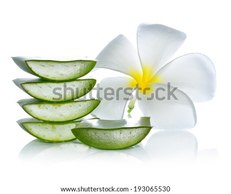 Aloe vera and frangipani flower on a white background. - stock photo