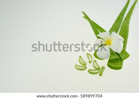 Aloe Vera and plumeria flowers for Spa with copy space