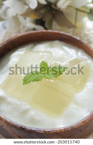Aloe vera and yogurt with mint on top for healthy breakfast image