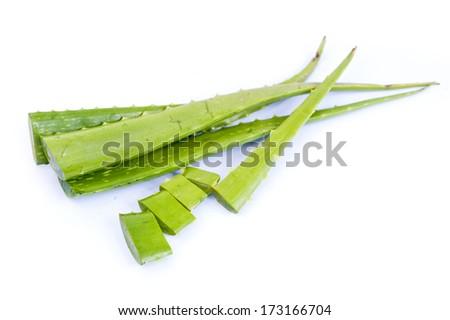 aloe vera fresh leaf. isolated on white  - stock photo